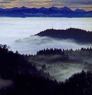 Туман над Мюльфиртелем